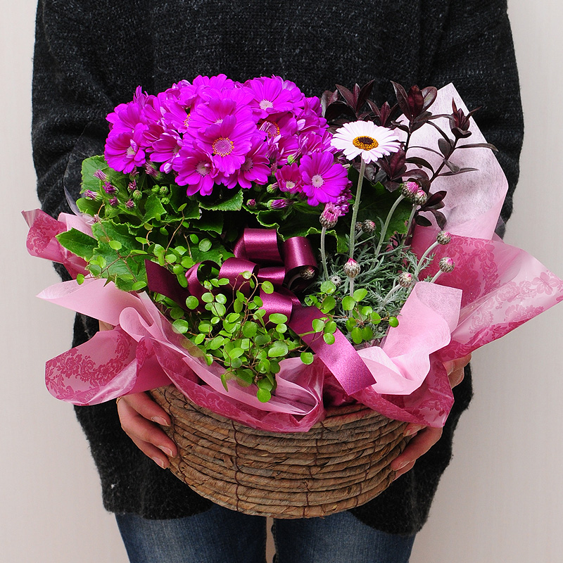 hanako celebration of sixtieth birthday seventy years of age