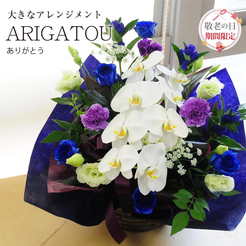 敬老の日 ARIGATOU ありがとう 感謝のアレンジ 宅配 配送 お祝い花 プレゼント