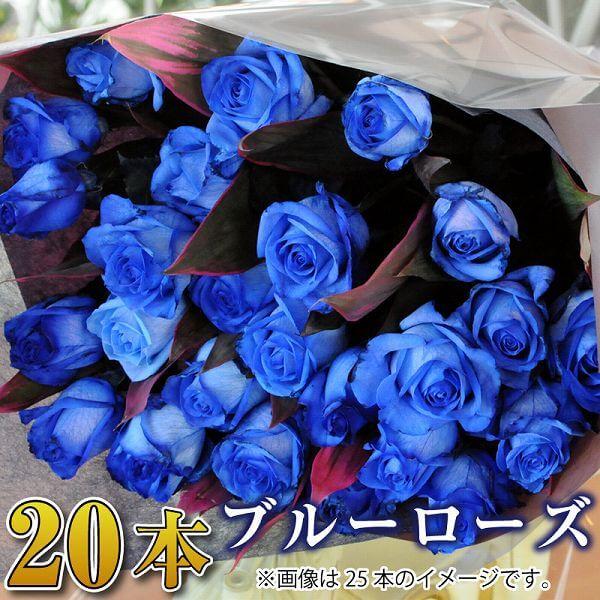 言葉 花 青い バラ