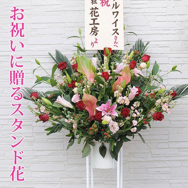 お祝い用スタンド花 1段タイプ Lサイズ フラワーギフトエーデルワイス花の贈り物 【楽ギフ_メッセ入力】 誕生日プレゼント