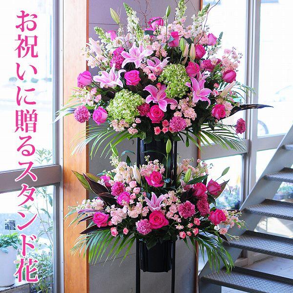 お祝い用スタンド花 フラワーギフトエーデルワイス花の贈り物 【楽ギフ_メッセ入力】 誕生日プレゼント