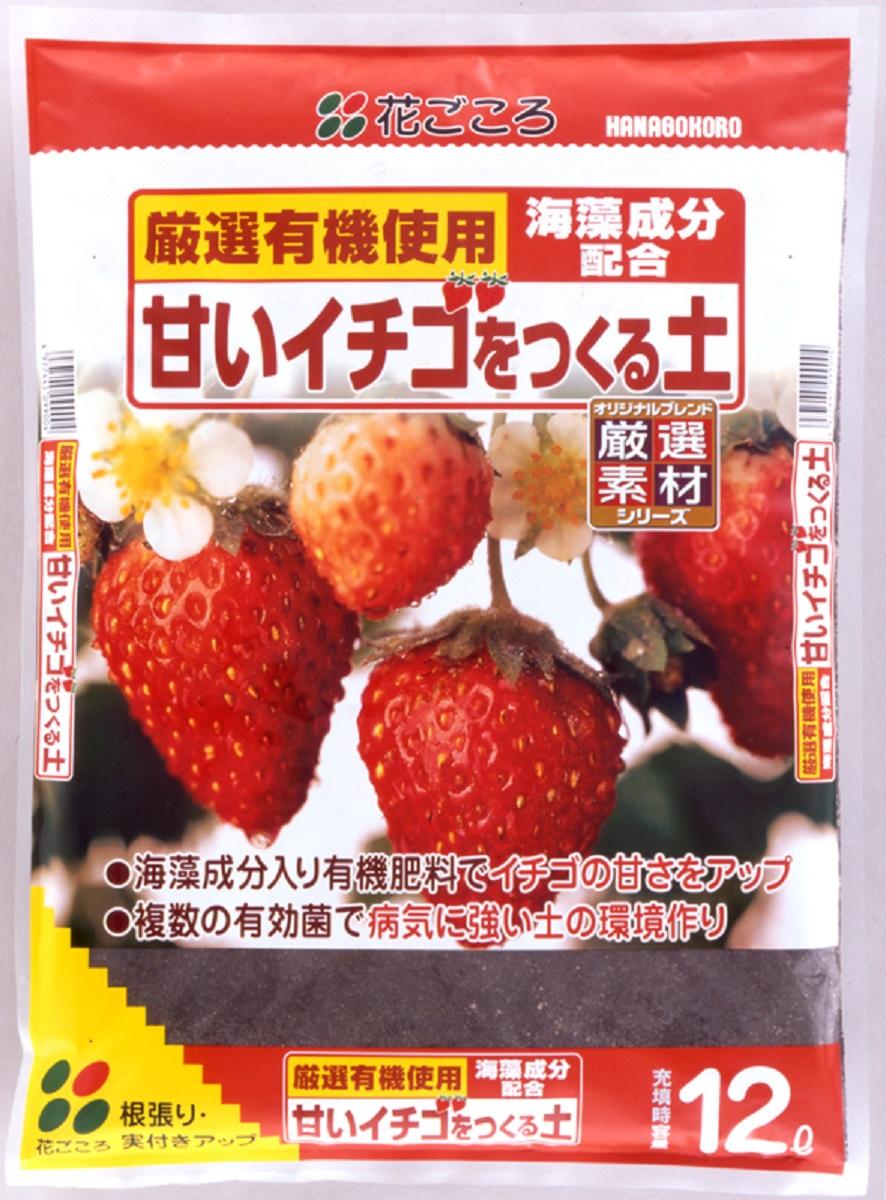 誕生日/お祝い 超特価SALE開催 ご家庭でも甘くて美味しい苺が作れます 甘いイチゴを作る土 12L