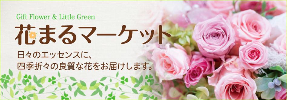 花まるマーケット:チイサナオハナヤグリーンヲオトドケイタシマス