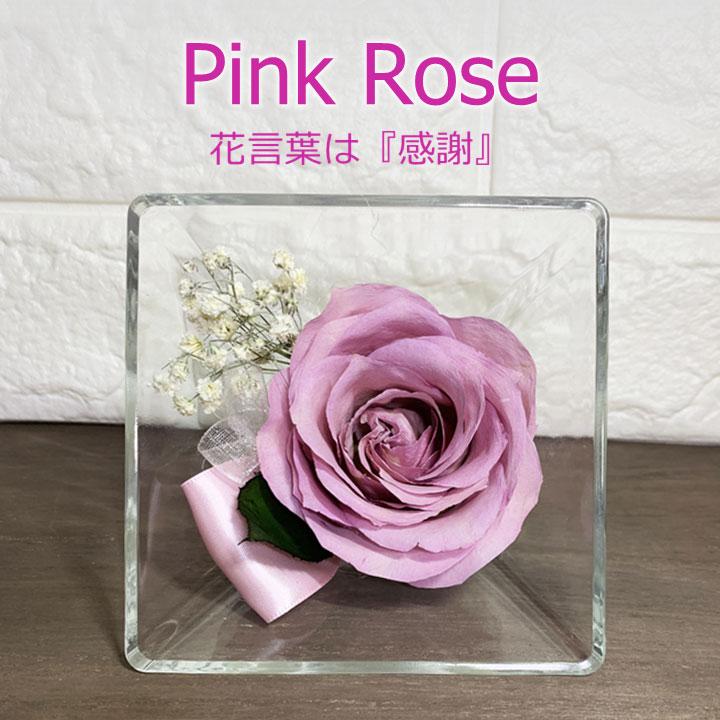 生花のピンク薔薇をドライ加工し ボトルに密閉したドライフラワーです 自然なままの美しさを数年間お楽しみいただけます プロポーズ ピンク薔薇のギフト 花言葉は 感謝 日本産 Pink Rose ピンクバラ 倉庫 ドライフラワー ピンクローズ スクエアボトル