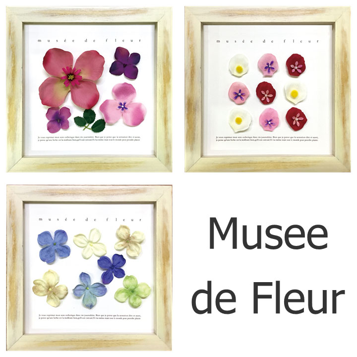お花が好きな方に立体的なフレームでお部屋をおしゃれに演出します ディスプレイフレーム Musee de Fleur 楽ギフ_包装 ボタニカル ナチュラル フラワー デザインは6種類からお選びいただけます 2020A/W新作送料無料 当店は最高な サービスを提供します