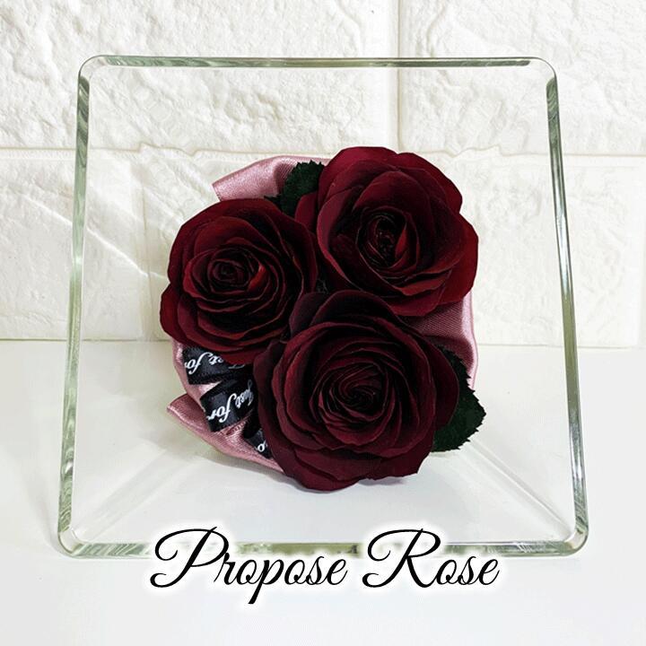 プロポーズ記念のバラをドライ加工し ボトルに密閉したボトルフラワーです 自然なままの美しさを数年間お楽しみいただけます プロポーズ デポー ローズ Mサイズ 赤い薔薇 レッドローズ 加工 Rose ドライフラワー スクエアボトル 保存 ギフト プレゼント ご褒美 Red プロポーズ記念 赤いバラ