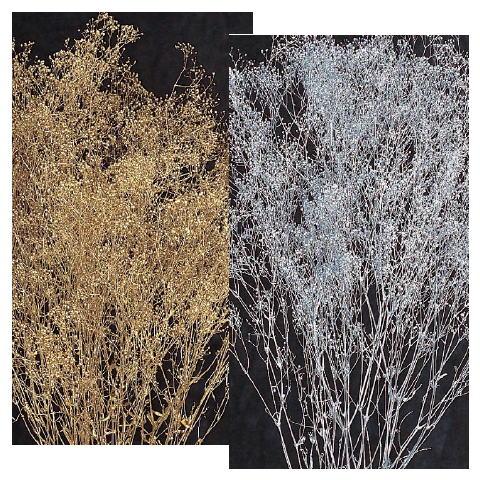 スーパーソフトミニカスミ草 引き出物 ゴールド シルバー プリザーブドフラワー ファクトリーアウトレット 材料 資材 花材