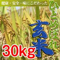 【令和1年度】ひとめぼれ 玄米【30kg】