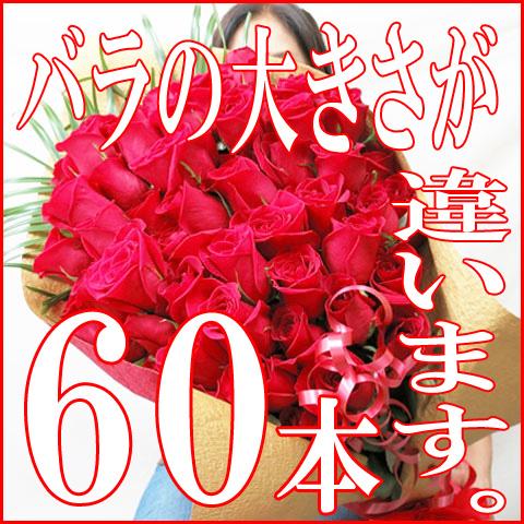 Hanashinwa rakuten global market 60th birthday celebration the 60th birthday celebration the size is different 60 cm large flowered roses negle Choice Image