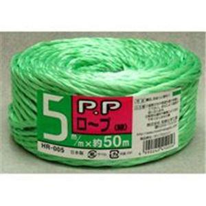 (業務用100セット) 宮島化学工業 PPロープ HR-005 小巻 50m 緑