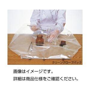 (まとめ)クリーングローブパック10枚組【×3セット】