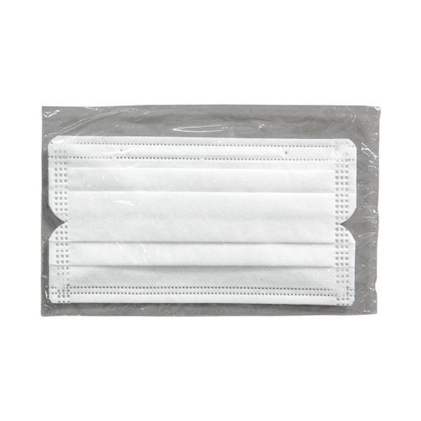 (まとめ) アイリスオーヤマ 安心・清潔マスク 100枚入 H-PK-AS100M【×10セット】