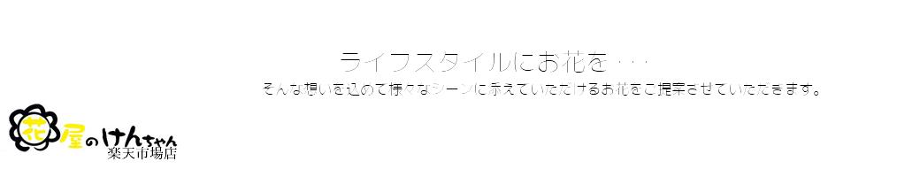 花屋のけんちゃん:横須賀から全国へスタイリッシュなお花を