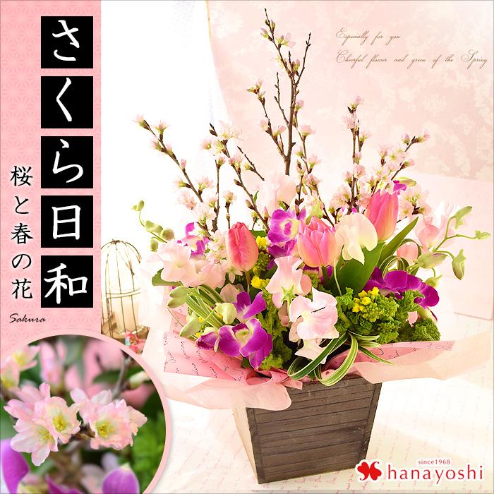 Cherry And Spring Flowers Flower Arrangement Sakura Biyori Tulips Sweet Pea Rape One Foot Ahead In Room Blossom Gift Wring Free 1 11 3