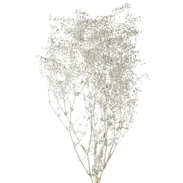 かすみ草 シルバー プリザーブドフラワー ハーバリウム、リース、ツリーの装飾、やレジン封入用のお花としてハンドメイドにおすすめ かすみ草 シルバー ソフトミニカスミ草 プリザーブドフラワー ハーバリウム レジン 21g ドライフラワー リース ハンドメイド かすみ草 撮影素材 大地農園