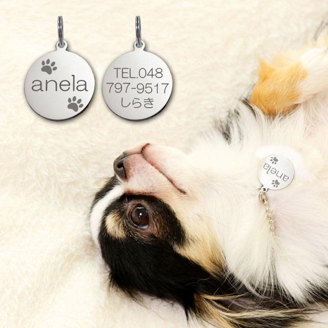 ネコポス配送 送料無料 ギフトラッピング 無料 迷子札 肉球 極小タイプ シルエット入 正規品 ネーム ステンレスサークルSS オンラインショップ プレート 小型犬用