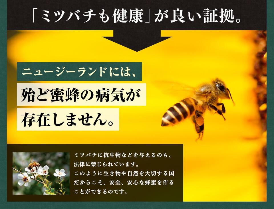 【マヌカハニー】【アクティブ マヌカハニー UMF10+ 500g MGO263~513相当】★2個セット 無農薬・無添加ニュージーランド天然蜂蜜/はちみつ/ハチミツ 100% Pure New Zealand Honey社マヌカ【HLS_DU】【RCP】