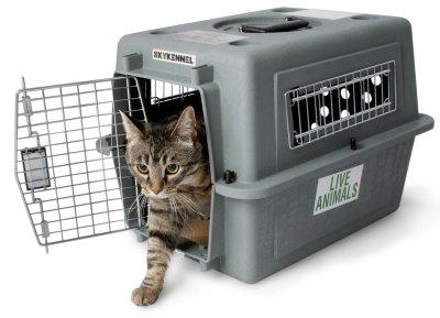 ※再入荷です!人気商品です※【ペットメイト】特に丈夫な高い強度を持つ強化プラスチック製のバリケンネルです。PETMATEスカイケンネルXXS【バリケンネル キャリーバッグ 帰省 お出かけ 災害 避難 防災 猫 小型犬】