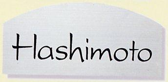 表札 ステンレス 金属表札 ステンレス表札 戸建 ヘアライン(ドライエッチング・彫込)サイズ:250×115×2mm【送料無料】[宅配便]