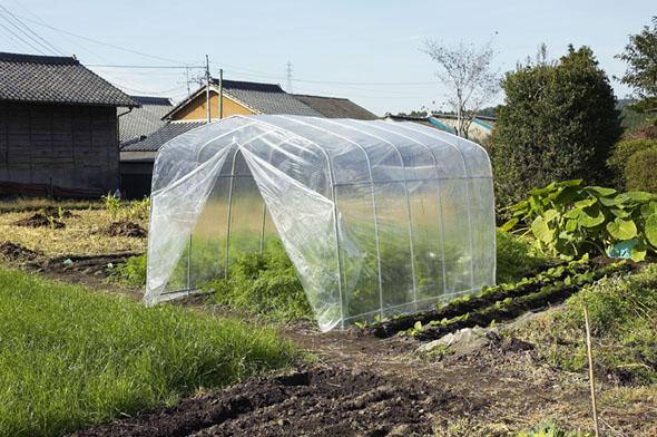 [法人様宛は送料無料(送料区分E)]ナンエイ ビニール温室、菜園ハウス 約2.2坪 H-20型
