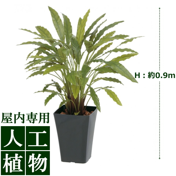 /人工植物/グリーンデコ カラテアG グリーン 0.9m/送料無料/RCP/05P03Sep16/【HLS_DU】