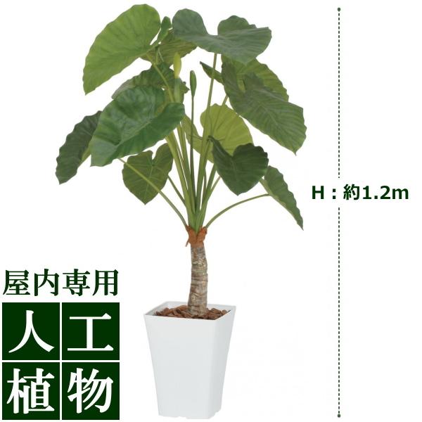 /人工植物/グリーンデコ クワズイモ 1.2m/送料無料/RCP/05P03Sep16/【HLS_DU】