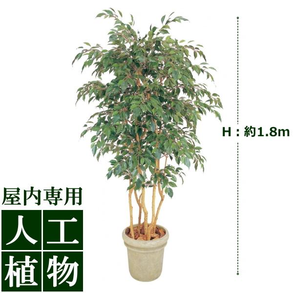 セットアップ /人工植物/グリーンデコ ベンジャミン 立木 5本立 1.8m/送料無料:DEPOS 2号館-花・観葉植物