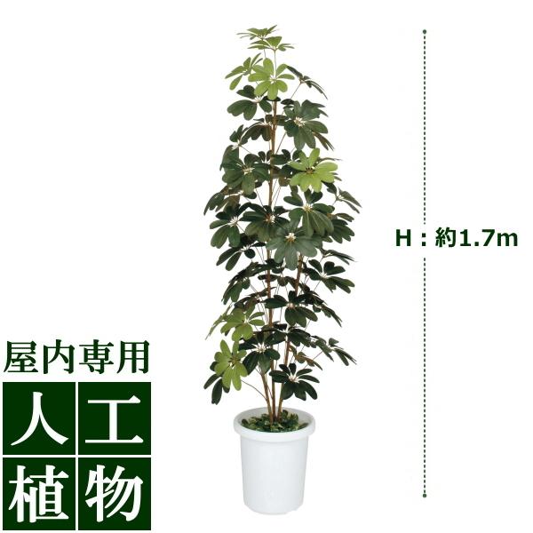 「美しい」がずっと続く。自然な色合い、表情が美しい人工植物。 /人工植物/グリーンデコ ミニシェフレラ 1.7m/送料無料/RCP/05P03Dec16/【HLS_DU】