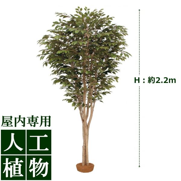 /人工植物/グリーンデコ 大型人工樹ベンジャミン 鉢無 2.2m/送料無料