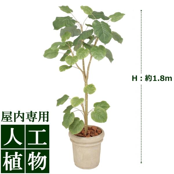 「美しい」がずっと続く。自然な色合い、表情が美しい人工植物。 /人工植物/グリーンデコ ウンベラータ 1.8m/送料無料/RCP/05P03Dec16/【HLS_DU】