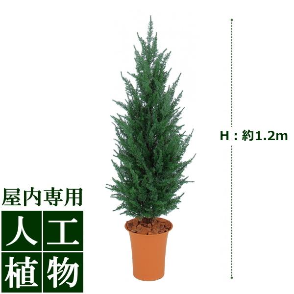 「美しい」がずっと続く。自然な色合い、表情が美しい人工植物。 /人工植物/グリーンデコ ゴールドクレスト グリーン 1.2m /RCP/05P03Dec16/【HLS_DU】