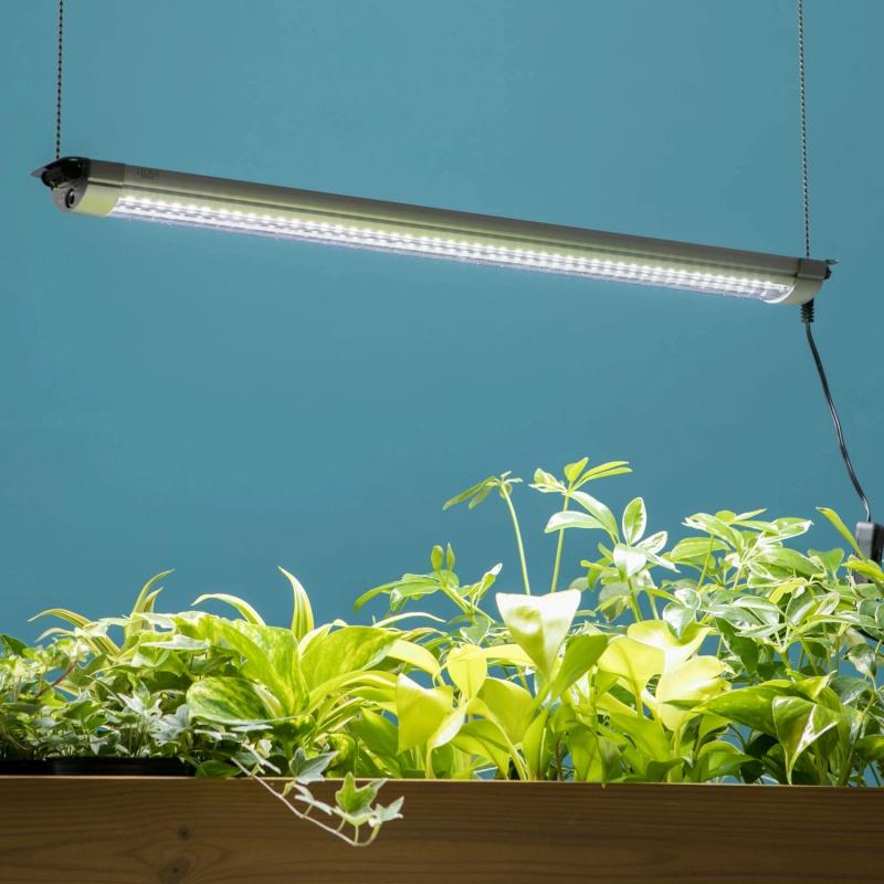 植物育成・観賞用ライト グローライト57cm 追加型/植物育成ライト 植物観賞ライト LEDライト 屋内用/RCP