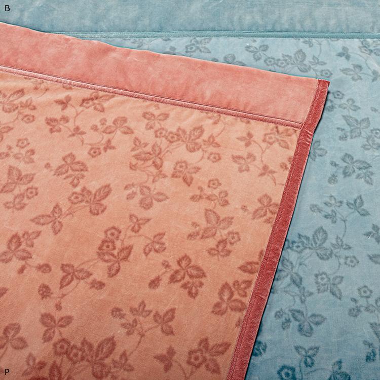 [ポイント6倍] 西川 ウェッジウッド アクリルニューマイヤー毛布 シングル 140×200cm 日本製 WEDGWOOD (WW9650)[キャッシュレスで 5%還元]