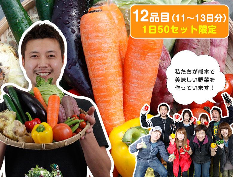 野菜セット  気まぐれ野菜増量中! イケメン野菜セット 野菜12種+熊本県産 名物!パプリカおまけ付!