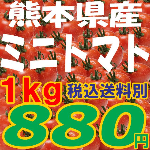 野菜>ミニトマト