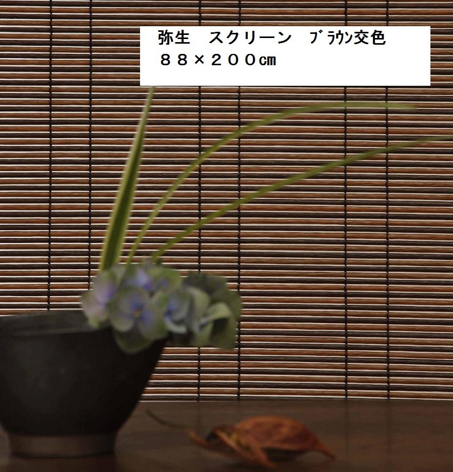 自然で高級感のある特許パイプを使用した和風スクリーンです ブラウン交色のみ 和風 スクリーン 弥生 幅88×長さ200cm 巻上器 屋内 ロールアップ 高級すだれ 付 屋外兼用 35%OFF M-1 贈物