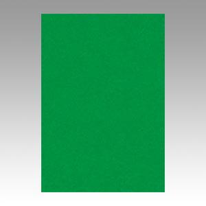 事務用品 色画用紙 ニューカラーR 【マラソンでポイント最大43.5倍】(まとめ) 色画用紙 文運堂 ニューカラーR 緑 8NCR-321 4954022683214 1冊【10×セット】