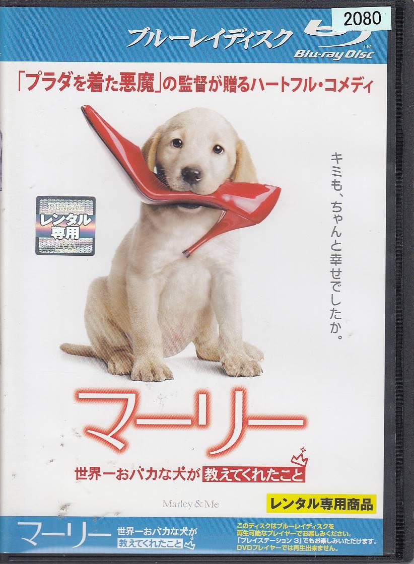 世界 一 お バカ な 犬 が 教え て くれ た こと