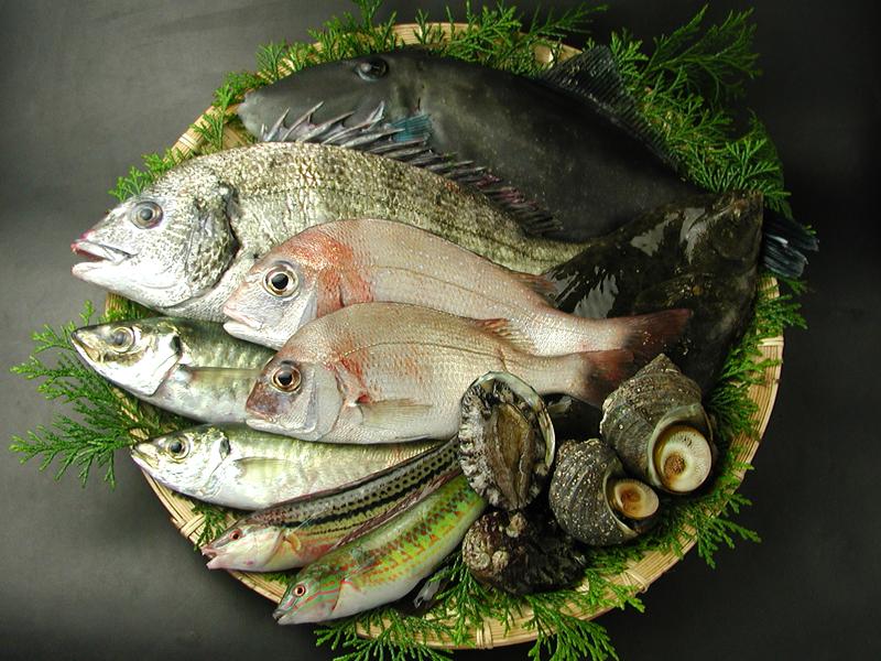 瀬戸内海の天然魚介類詰め合わせ(6~8人分)送料込み