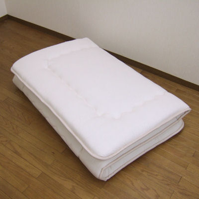 Monitor Price Clean And Safe Soft Mattress Bed Futon しきぶとん Size Fs2gm