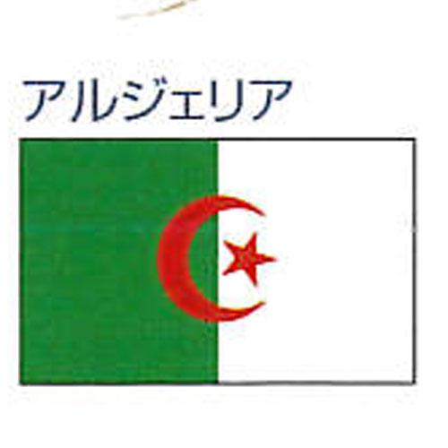 エクスラン外国旗 90×135 アルジェリア(小) 式典 アクリル100% [送料無料] 迎賓 旗 フラッグ [送料無料] FLAG 迎賓 式典, 自家農園梅干『小竹農園』:508803e9 --- sunward.msk.ru