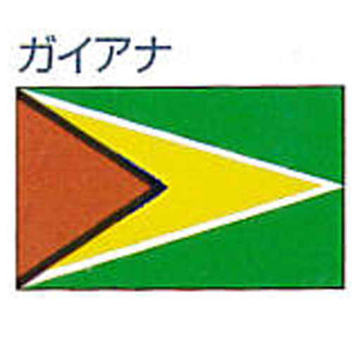 エクスラン外国旗 120×180 ガイアナ(大) アクリル100% [送料無料] 旗 フラッグ FLAG 迎賓 式典
