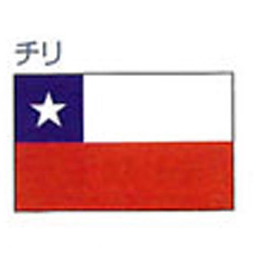 エクスラン外国旗 120×180 チリ(大) アクリル100% [送料無料] 旗 フラッグ FLAG 迎賓 式典