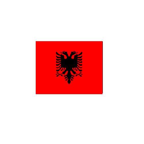 オーダー 外国旗 アルバニア H120×W180cm テトロンポンジ製 Albania 旗 フラッグ FLAG [送料無料]NB 160か国対応