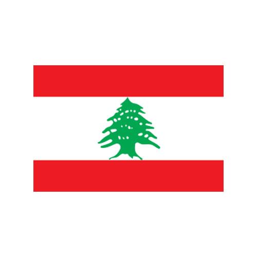 エクスラン外国旗 90×135 レバノン(小) アクリル100% [送料無料] 旗 フラッグ FLAG 迎賓 式典