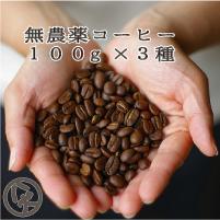 無農薬 有機栽培 コーヒー 送料無料 お試し コーヒー豆 珈琲豆 お試し無農薬 別倉庫からの配送 セット 売り出し ゆうパケット発送 八月の犬 ドリップ 100gx3種