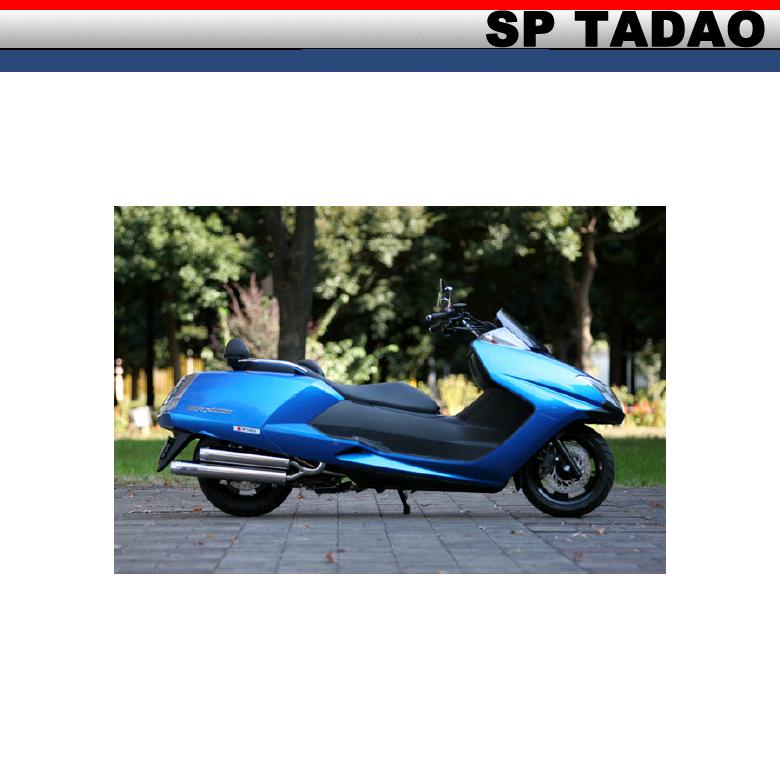 【SP忠男】【SP TADAO】【マフラー】【-06 MAXAM250】PURE SPORT td1【MX2-SD-01】【送料無料】