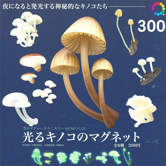 Suddenly I'm glowing Technicolor nature MONO PLUS mushroom magnet ☆ 8 kinds set ★