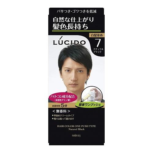 簡単ワンプッシュ 髪頭皮にやさしい使用感のヘアカラー ナチュラルブラック ルシード ワンプッシュケアカラー 医薬部外品 5☆好評 2剤50g メンズ 送料無料でお届けします MEN'S マンダム ヘアカラー 1剤50g