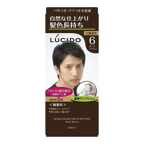 簡単ワンプッシュ 髪頭皮にやさしい使用感のヘアカラー ダークブラウン ルシード ワンプッシュケアカラー 医薬部外品 マンダム チープ 35%OFF MEN'S 2剤50g メンズ 1剤50g ヘアカラー